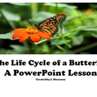 The Life Cycle of a Butterfly-A PowerPoint Lesson