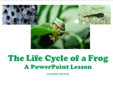 The Life Cycle of a Frog- A PowerPoint Lesson
