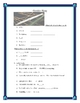 The Outsiders by SE Hinton Slang and Idiom worksheets and