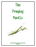 The Praying Mantis -- A Brief Overview for Young Children