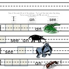 Theme 3 Animals Practice Pages