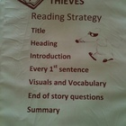 Thieves Nonfiction Reading Strategy