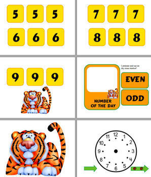 Tiger Themed Calendar Bulletin Board Materials