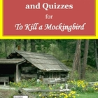 To Kill a Mockingbird Vocabulary Activities, Quizzes, and Test