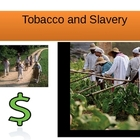 Tobacco and Slavery in Virginia