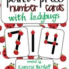 Touch Point Number Cards with Ladybugs 1-9