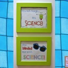 Two Fun Science Posters Freebie