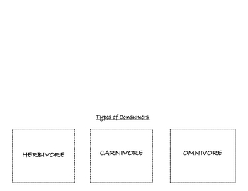 Types of Consumers Flipbook