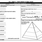 Unit 1, Chapter 6 Graphic Organizer