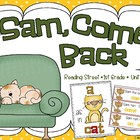 Sam, Come Back!