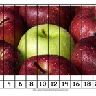 Updated Apple Skip Counting Puzzles