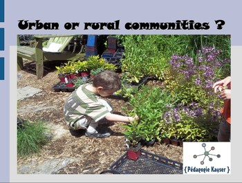 Urban or rural communities ?