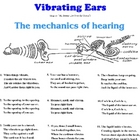 Vibrating Ears