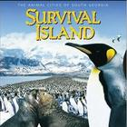Video Questions- IMAX Survival Island