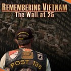 Vietnam Memorial Video Questions -- includes link to downl