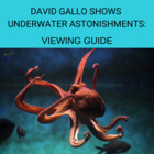 Viewing Guide TED Talks - David Gallo shows underwater ast