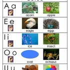 "Vowel Chart (From ""Vowel Sound Samba"")"