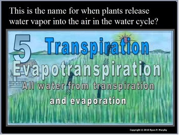 Water, Carbon, Nitrogen, Phosphorus Cycle Review Game