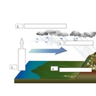 Water Cycle Do Now worksheet