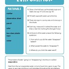 Water Cycle: Evaporation and Condensation Chart