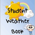 Weather Book Graphic Organizer