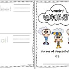 Weather Booklet (four types of precipitation!)