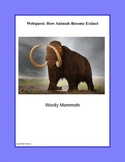 WebQuest: How Animals Become Extinct