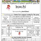 Weekly Grammar & Language Insects Packet