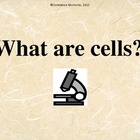 What Are Cells???
