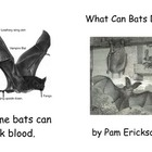 What Can Bats Do?- a non-fiction guided reading book