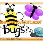 What Can You Write About Bugs?