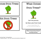 What Comes From Trees? Sorting Activity