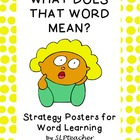 What Does That Word Mean?  Strategy Posters for Word Learning
