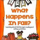 What Happens In Fall?