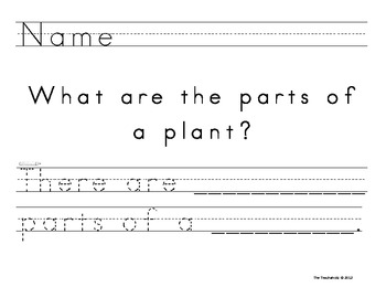 What are the Parts of a Plant - Primary Writing Activity