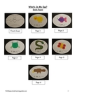 What&#039;s In My Egg? Oviparous Animal Book for Students to Make