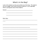 What's In the Bag Main Idea and Details Activity