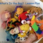 What&#039;s in the bag?  Ecology Lesson Plan