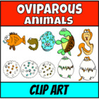 What's in the egg? Vertebrates Clip Art