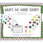 What&#039;s the Middle Sound? CVC Sorting Practice