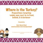 Where is the Turkey?  Prepositions!