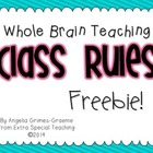 Whole Brain Teaching Class Rules - FREEBIE!