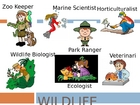 Wildlife Careers - Animal/Plant