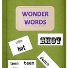 Wonder Words (what&#039;s the hidden message) - Language Resource