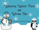 Wonderful Winter Poems and Writing Pack