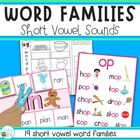 Word Families - games, activities, posters and recording sheets