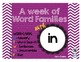 Word Family - IN family