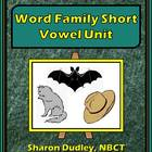 Word Family Worksheet Package