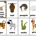Word Flash Cards - Animals