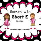 Working with Short E Mini Unit